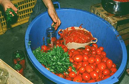 sizilien tomaten der schatz des s dens die kulinarische ecke alle 14 tage folge 4 nrhz. Black Bedroom Furniture Sets. Home Design Ideas